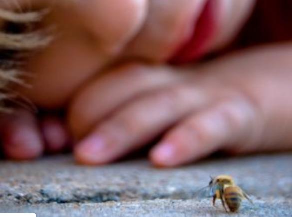 Το πρώτο σκίρτημα για την Μέλισσα