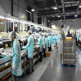 UOM sin aumento salarial hasta mediados 2020