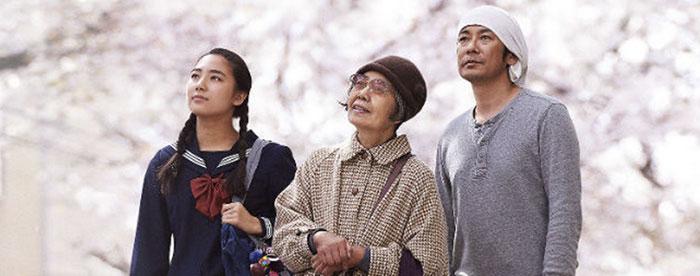 Wakana tokue et sentaro sous les cerisiers en fleur