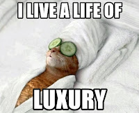 and the occasional spa day