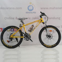 24 triojet iconic 2 junior mountain bike