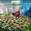 Brigadeiro Fit Herbalife – Confira essa delícia saudável