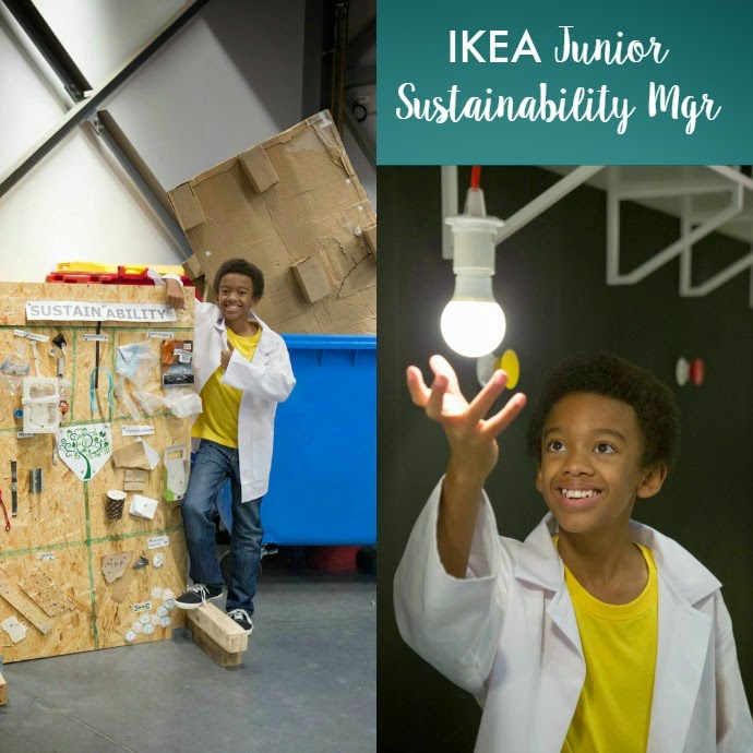 IKEA Sustainability Manager