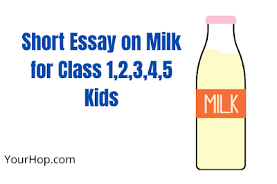 Essay on Milk