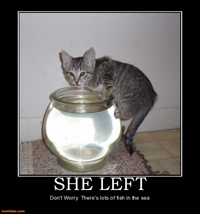 Fish Motivational Quotes: Funny Picture Clip: Very Lost Funny Cat Posters