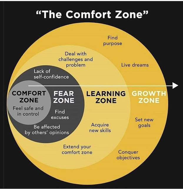 comfort zone to growth zone .