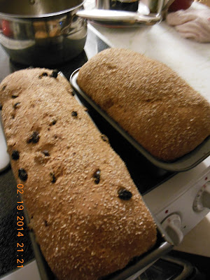 Wheat and Honey loaves, cooling on the counter.