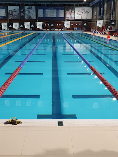 Picture of an indoor swimming centre with leaderboards and lanes and flags: swimming backstroke, do you have to hit your head?
