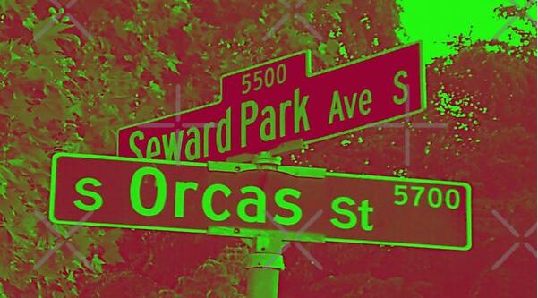 Seward Park Avenue & Orcas Street, Seattle, Washington by Mistah Wilson