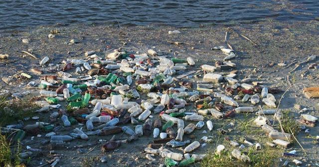 plastic water bottle waste reduce