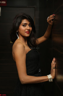 Shalu Chourasiya in spicy Sleeveless Strapless Black Top at O Pilla Nee Valla Movie Audio Launch Feb 2017 035.JPG