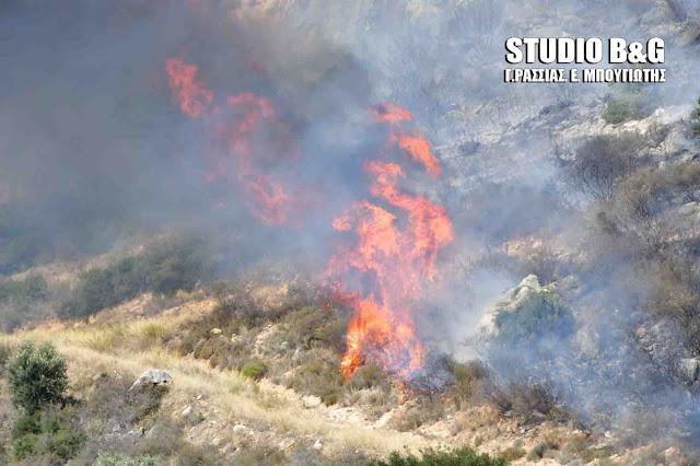 Αργολίδα: Φωτιά στην περιοχή της Μιδέας