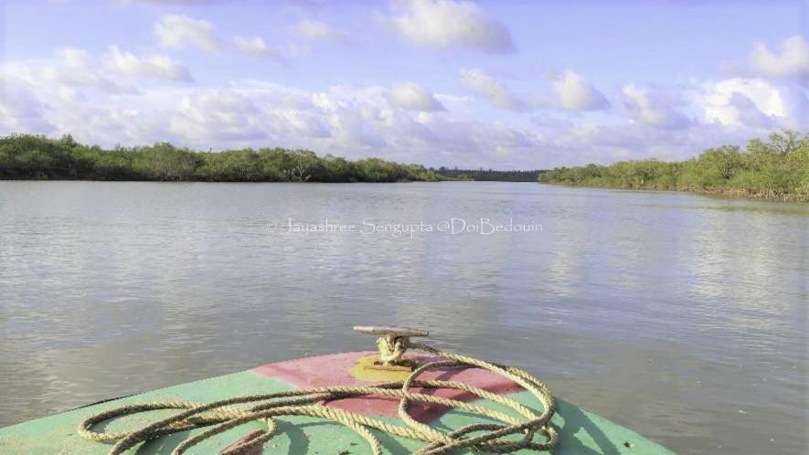 Steering through Subarnarekha, bichitrapur, doibedouin