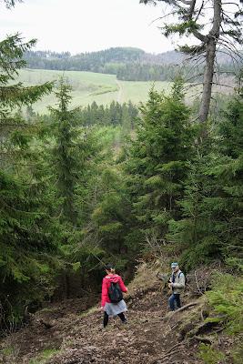 Strome zejście z Waligóry do widocznej już Przełęczy Trzech Dolin