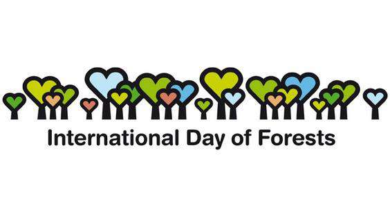 International Day of Forests Wishes Pics