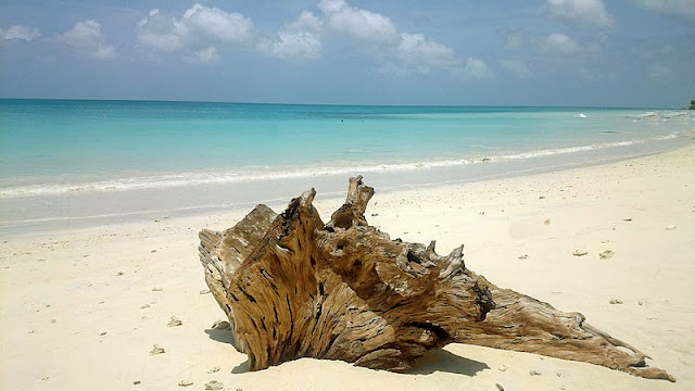 7 Sublime Beaches to Visit in Havelock Island, havelock island