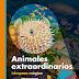 Reseña: Animales Extraordinarios - Ute Fuhr