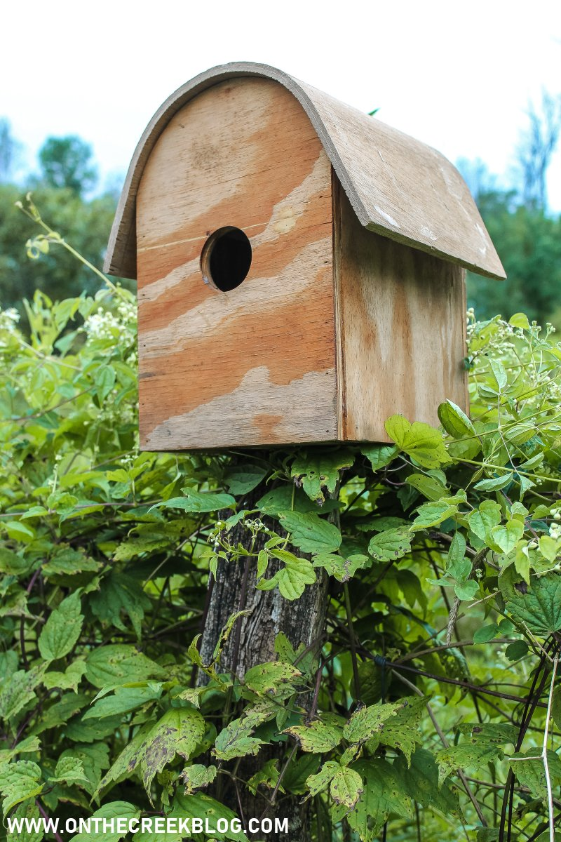 Wood bird house | Thrifting Finds! | On The Creek Blog