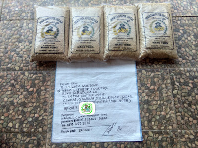 Benih padi yang dibeli   BILLY RM Bogor, Jabar.  (Sebelum packing karung).