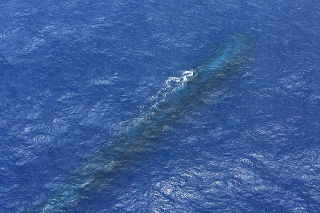 Un submarino de propulsión nuclear avistado con el periscopio por un P-3C de la RAAF durante el RIMPAC 2010 cerca de Hawai.