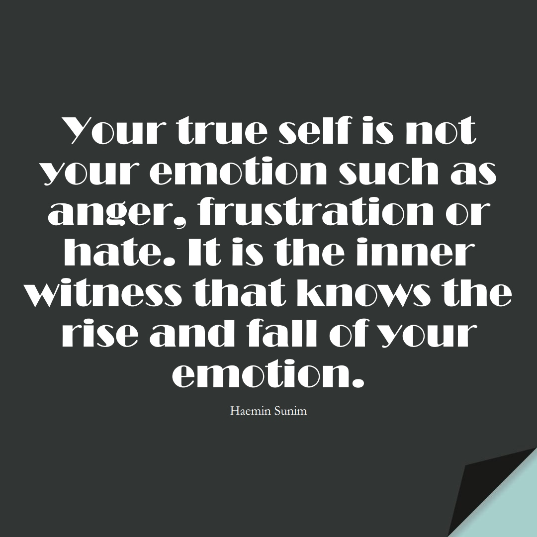 Your true self is not your emotion such as anger, frustration or hate. It is the inner witness that knows the rise and fall of your emotion. (Haemin Sunim);  #StoicQuotes