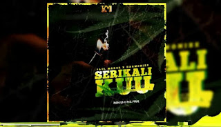Audio | Harmonize - Serikali ya Mizuka remix