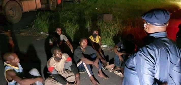 Governor Wike Arrests 14 Men Hidden In Trailers Conveying Cows From The North (Photos)
