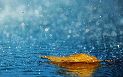 Gambar DP Hujan Terbaru Rintik Hujan Rinai Sedih Hati Galau