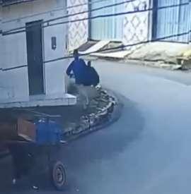 Assaltante leva celulares e é flagrado usando carroça para fugir
