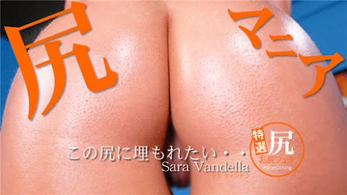 Kin8tengoku_3137_cover