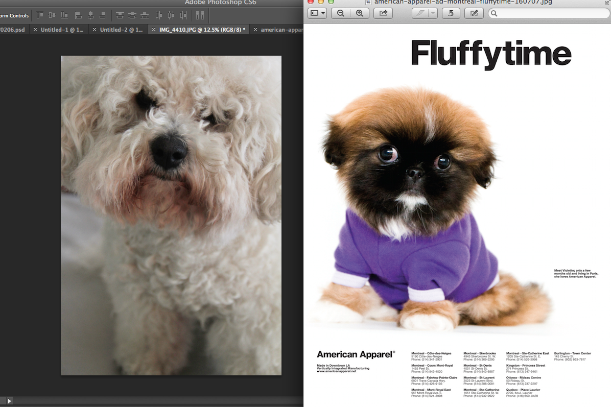 Design Context : Developing my own American Apparel adverts