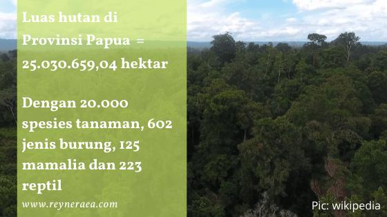 luas dan isi hutan papua