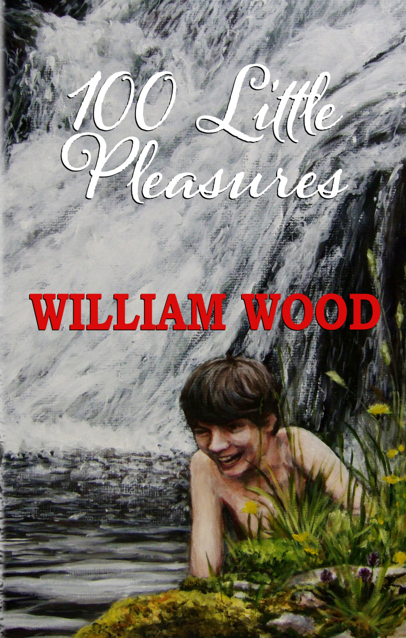 Sunpenny Publishing Group: 100 Little Pleasures: a new edition of ...