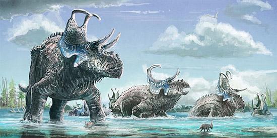 Nova espécie de dinossauro - Machairoceratops cronusi
