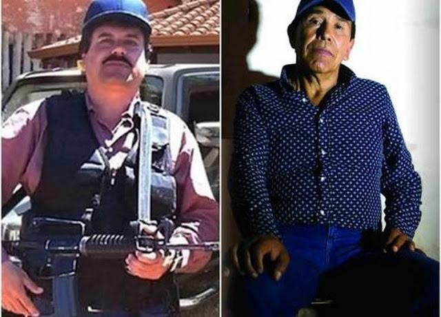 """""""El Chapo"""" por Caro Quintero, el plan para disminuir la violencia"""
