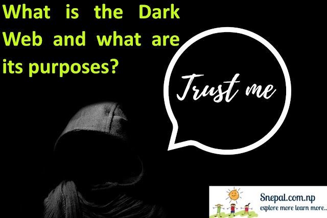 What is the Dark Web and what are its purposes?
