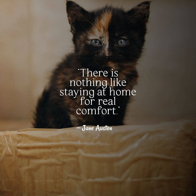 Coming back to home quotes