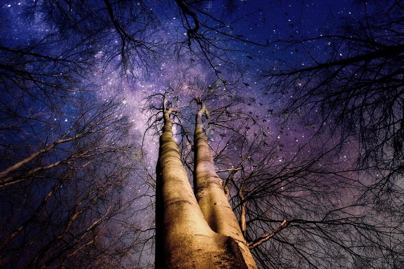 أفضل خلفيات الفضاء والطبيعة 2020