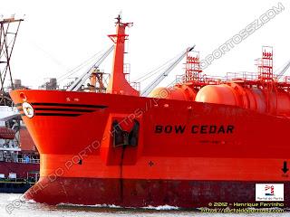 Bow Cedar