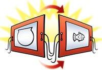 Percobaan Membuat Movie Ikan di Akuarium