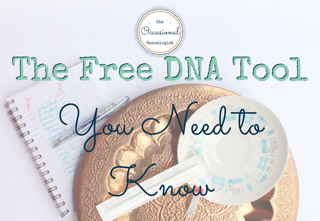 The Free DNA Tool You Need to Know | The Occasional Genealogist