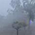 Oluja bjesni u Hrvatskoj: Strašno nevrijeme čupa stabla, lete krovovi VIDEO