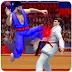 Tag Team Karate Fighting Tiger: World Kung Fu King Game Tips, Tricks & Cheat Code