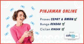 pinjaman dana online