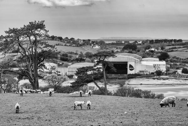 Appledore Shipyard on the banks of the Torridge Estuary, North Devon Photo copyright Pat Adams North Devon Focus (All Rights Reserved)