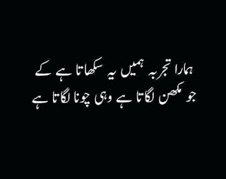 funny urdu quotes 15