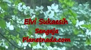 Download Lagu Elvie S Sengaja Mp3