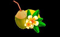 coconut clip art pictures