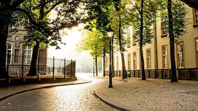 City, buildings, road, trees, park, path