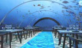 The luxurious resort in Maldives having the largest in the world all underwater restaurant with really significant sea life separates itself from other resorts in Maldives, the Hurawalhi is encircled by a fantastic house reef, lovely lagoon and lengthy stretches of white sandy beaches.